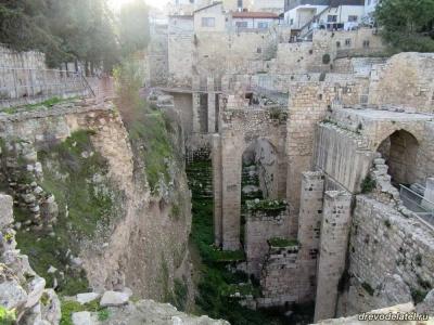 Поездка в Иерусалим в феврале 2018 года, часть 10